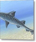 Hybodus Shark, Artwork Metal Print