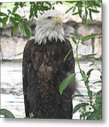 I Am Deep In Thought Metal Print