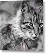 I Am Serious Metal Print