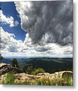 I Can Touch The Sky  Metal Print