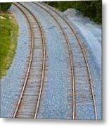 I Curve To The Left 2 Metal Print