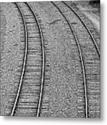 I Curve To The Left Metal Print