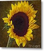 I Dance With The Sun Metal Print