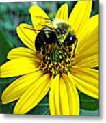 I Love Pollen Metal Print by Maria Scarfone