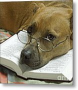 I Read My Bible Every Day Metal Print