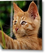 I Will Catch You Metal Print