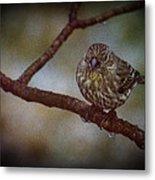 Ice Droplet Bird Metal Print