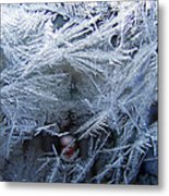 Ice Is Nice Metal Print