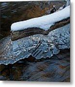 Ice Scallops Metal Print