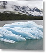 Iceberg In Endicott Arm, Inside Metal Print
