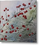 Iced Holly Metal Print