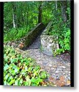 Ichetucknee Stairway Metal Print