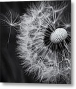 If Only Wishes Came True Metal Print