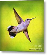 If Wishes Had Wings Metal Print