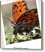 If You Need Me - Butterfly Metal Print