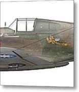 Illustration Of A Curtiss P40-c Warhawk Metal Print