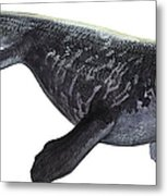 Illustration Of A Prognathodon Metal Print