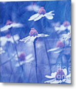Imagine 06ht01 Metal Print by Variance Collections