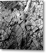 Immage In Stones Metal Print