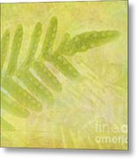 Impressions Of A Fern Metal Print