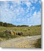 In A Country Field Metal Print