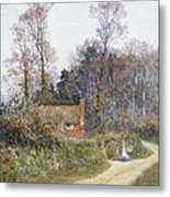 In A Witley Lane Metal Print