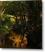 In Golden Moments Of Reflection Metal Print