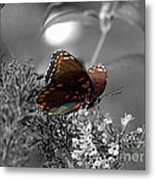In Living Colour Metal Print