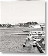 In Plane Sight Metal Print