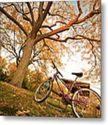 In Search Of Fall Colors Metal Print