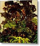 In Th Trees Metal Print
