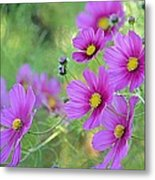 In The Company Of Pink Metal Print
