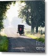 In The Heat Of The Day Metal Print
