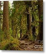 In The Land Of The Giants  Metal Print
