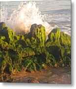 In The Magic Light Metal Print