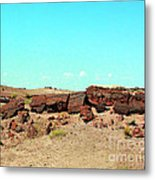 In The Petrified Forest In Arizona Metal Print