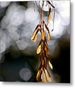 In The Silence Of The Monent Metal Print
