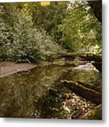 In The Stillness Of Paradise Metal Print