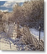In Winter's Chill Metal Print