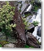 Inchquinn Waterfall, Beara Peninsula Metal Print