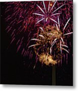 Independence Day In Dc 4 Metal Print by David Hahn