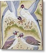 India: Pheasants Metal Print