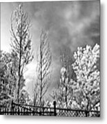 Infrared Summer Storm 2 Metal Print