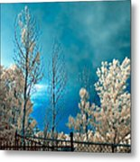 Infrared Summer Storm Metal Print