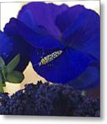 Insect On Flower Metal Print