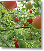 Inside The Red Huckleberry Metal Print