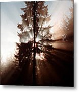 Inspiration Tree Metal Print