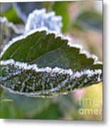 Intensify Metal Print
