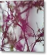 Inter-vined Metal Print