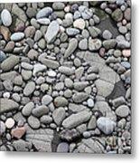 Intertidal Shore Metal Print